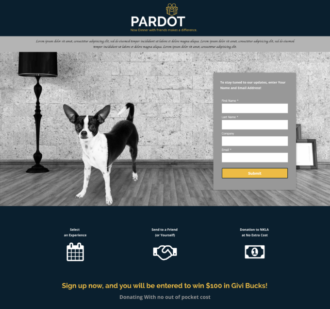 Pardot Lead Form